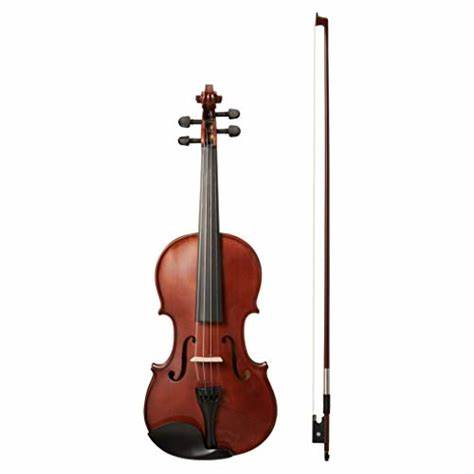 amazon besisi violin