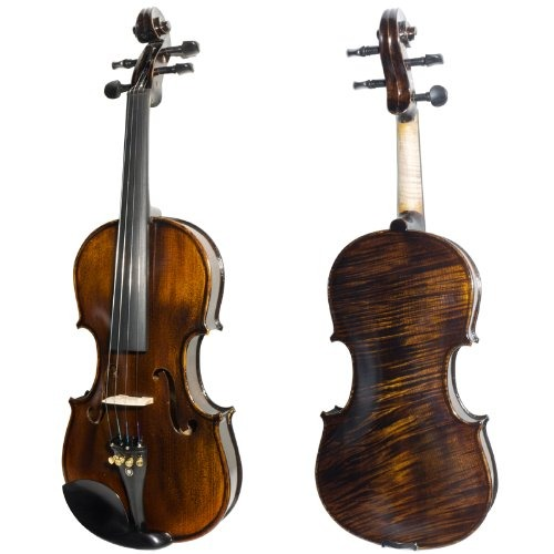 best beginners violin
