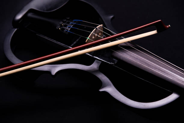cecilio cevn 2bk electric violin